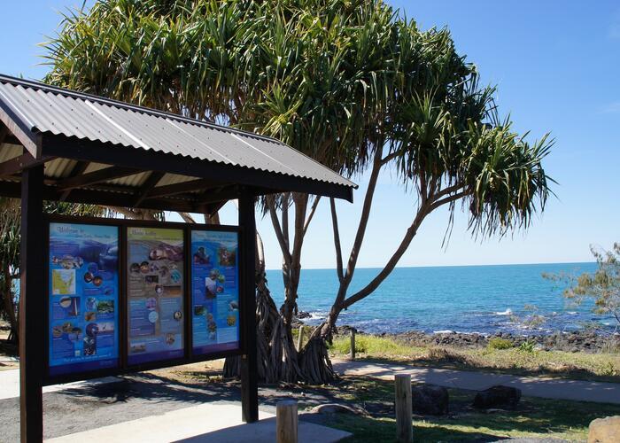 Barolin Rocks Dive Site | Southern Great Barrier Reef